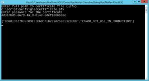 Console client calling web api